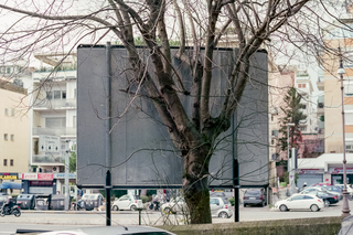 Billboard Tree